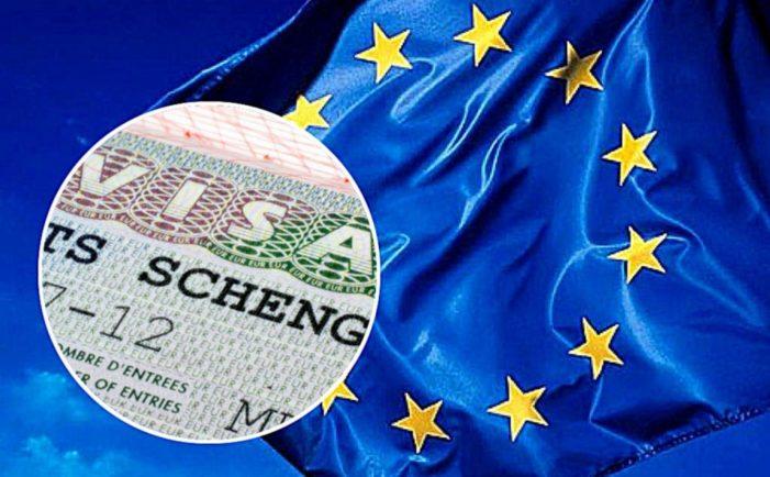 Шенген на 6 месяцев: особенности получения