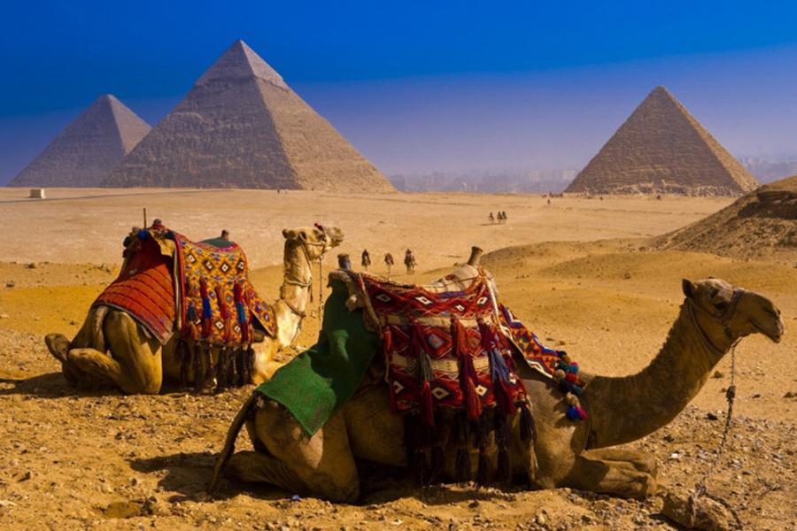 Руководство Египта объявило о запуске электронной системы выдачи виз