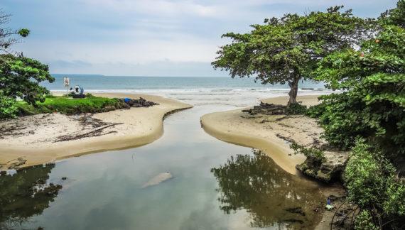 Краткий обзор африканского государства Габон