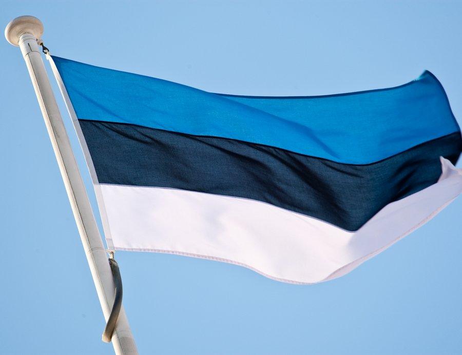 В Эстонии приняли решение о том, что иностранные студенты могут оставаться в стране и после окончания своей учебы