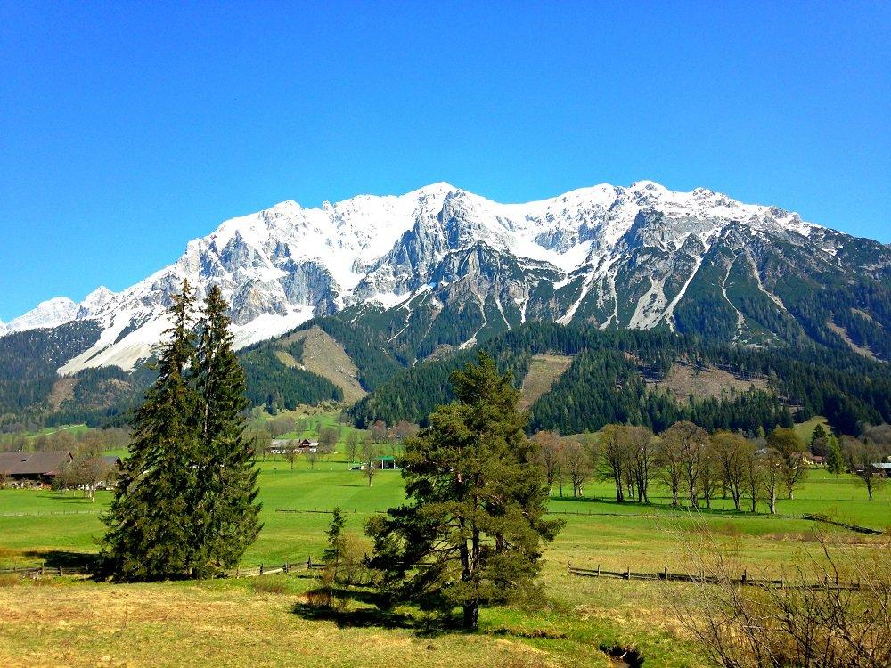 Сколько же стоит жизнь в Австрии?