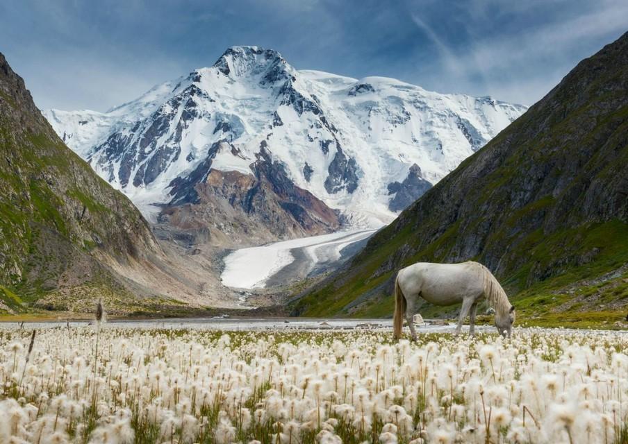 Особенности посещения Киргизии гражданами России