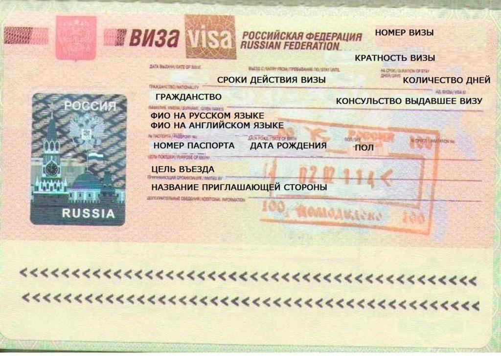 В России предлагают упростить выдачу виз иностранным гражданам