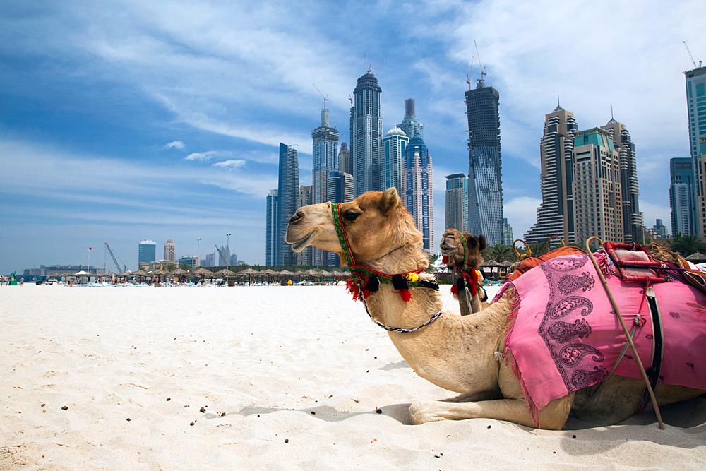 Специальные визы введены для пенсионеров, желающих поехать в  ОАЭ