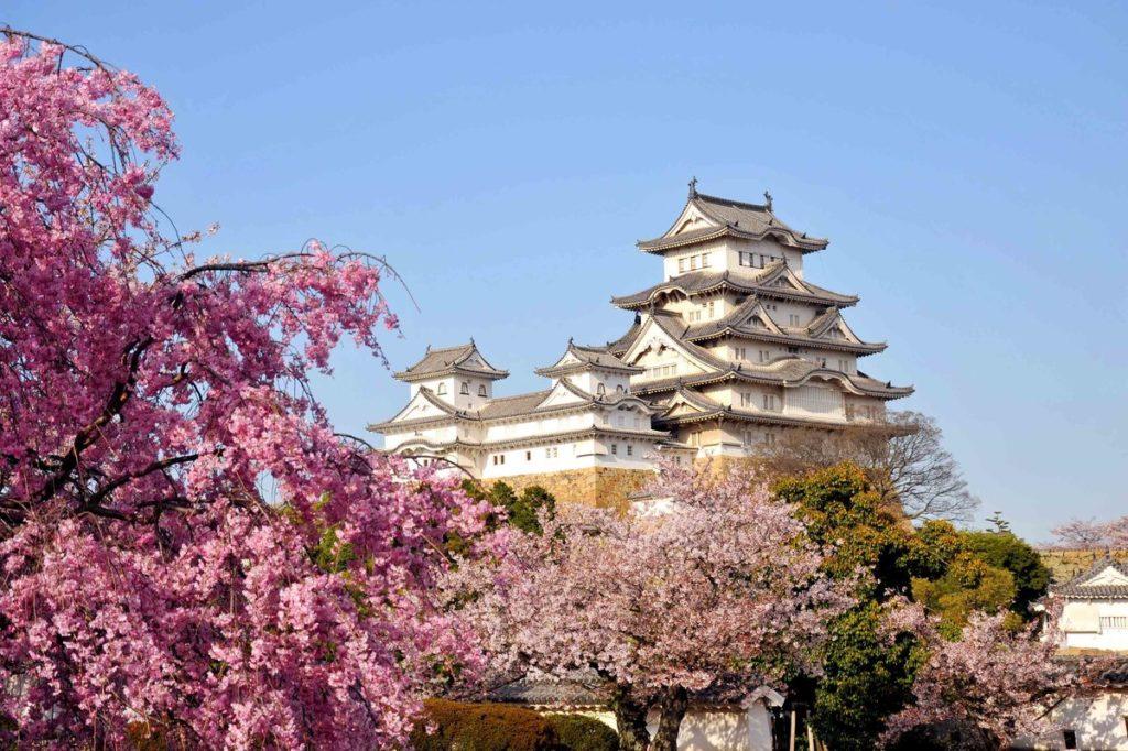 Посольство Японии заявило о готовности работать над упрощением визового режима касательно граждан Российской Федерации