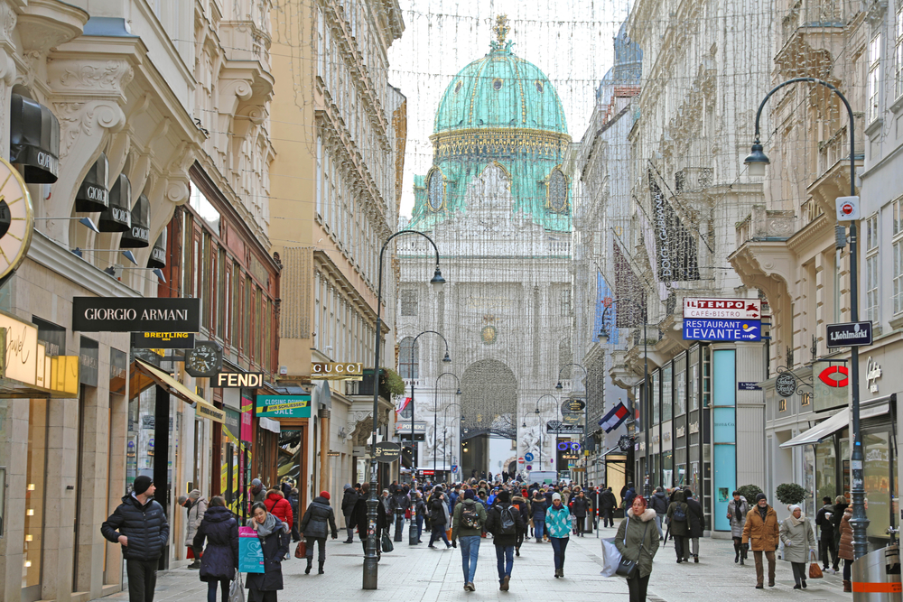 ВНЖ Австрии через бизнес: без риска нет победы
