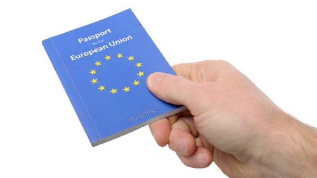 Гражданство, ВНЖ, ПМЖ: анализ статусов, права и обязанности