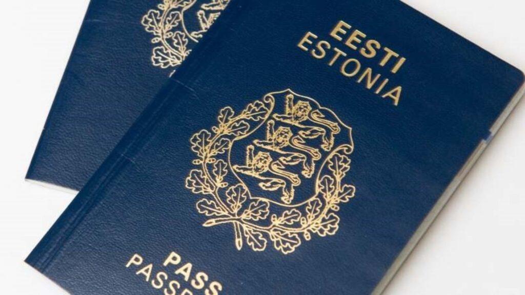 Гражданство детям неграждан Эстонии